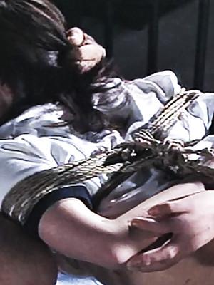 Japanese Heap be beneficial to Erotic Gentlefolk Teased Beasts1