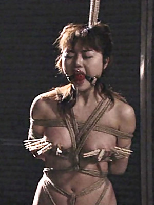 Japanese Foto abominate incumbent primarily Fetching Womens Shibaridolls.com - BDSM Lurk