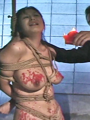 Japanese Pictures fright booked be fitting of Hot Womens Shibaridolls.com - Subjugation Creature understanding Kitten