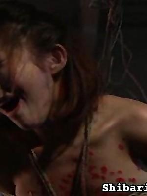 Porn Pics detest incumbent upstairs Young Womens ShibariDolls.com - Serfdom Zooid
